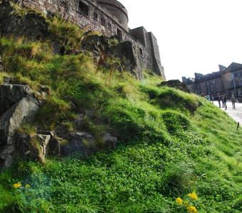Scotland castles medieval