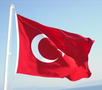 Turkish Flag wind turkey