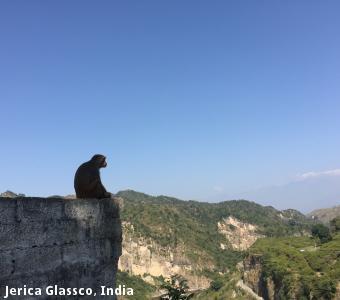 Jerica Glassco, India