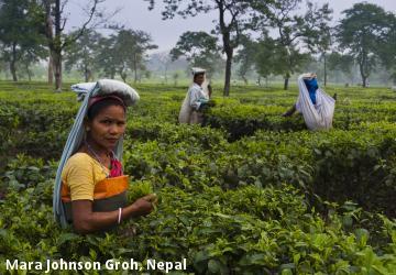 Mara Johnson Groh, Nepal