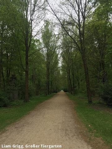 Liam Grigg, Großer Tiergarten